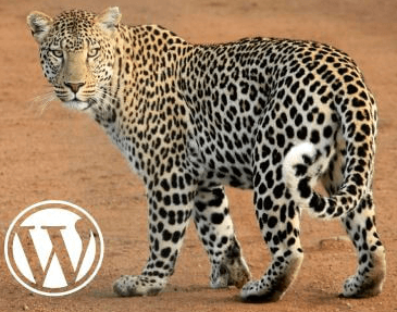 WordPress Gepard